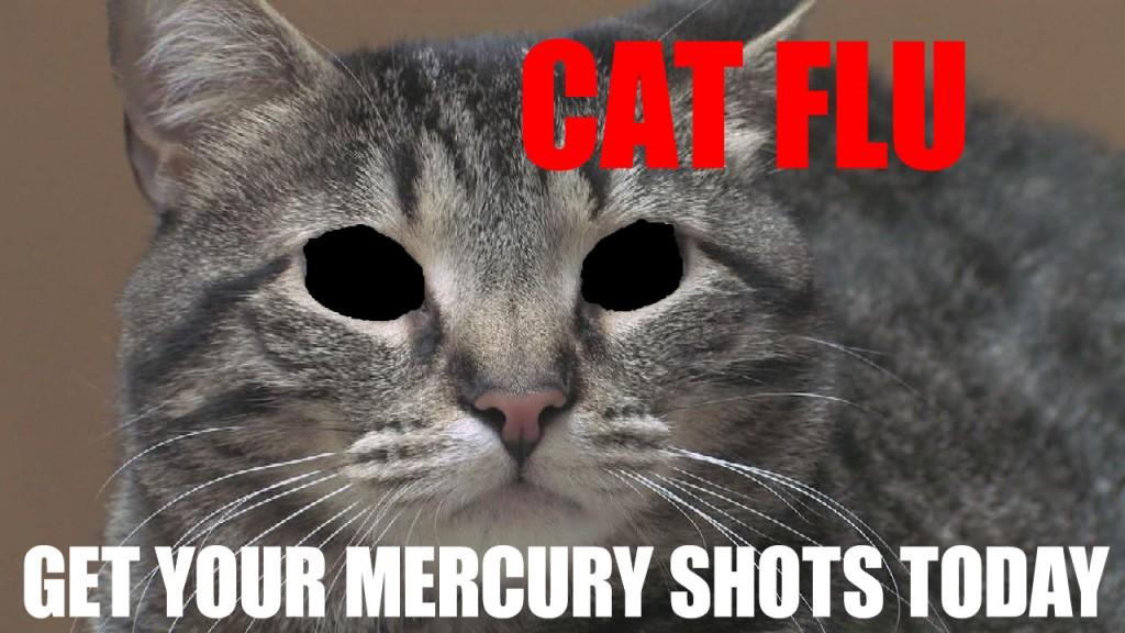 CAT FLU