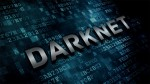 Some that have suggested the Darknet isn't so Dark have ignited a controversy causing a spate of vicious doxings and e-torture