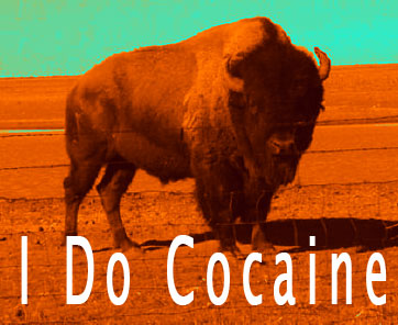 bison does cocaine