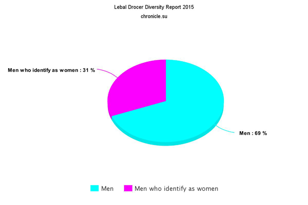Lebal Drocer Diversity Report 2015 - The pay grade for employees who identify as women is reduced in proportion to their femininity.