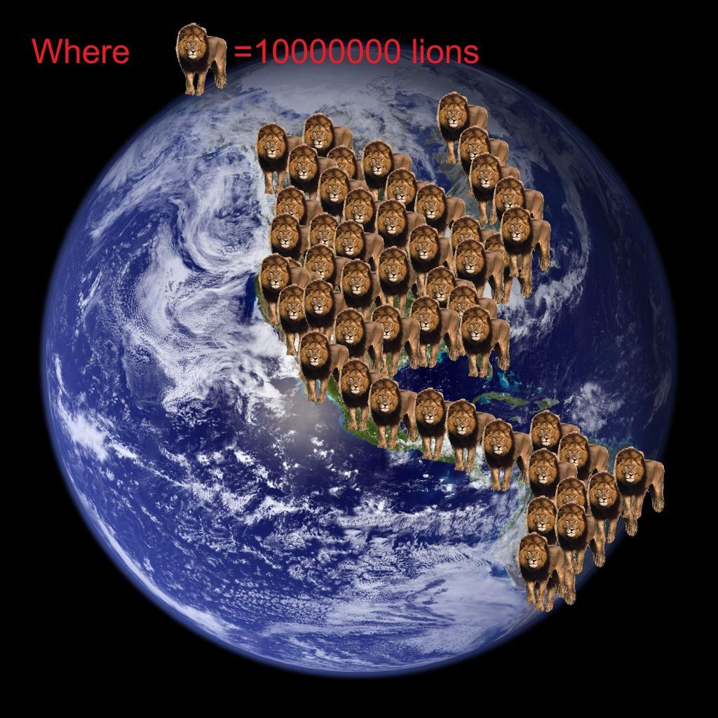 The Lion War