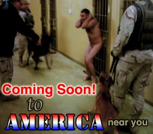 preview 300x263 Obama to sign NDAA   Neverending Destruction of America Act