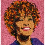 small whitney houston pills 150x150 Current events protester has no idea what hes protesting